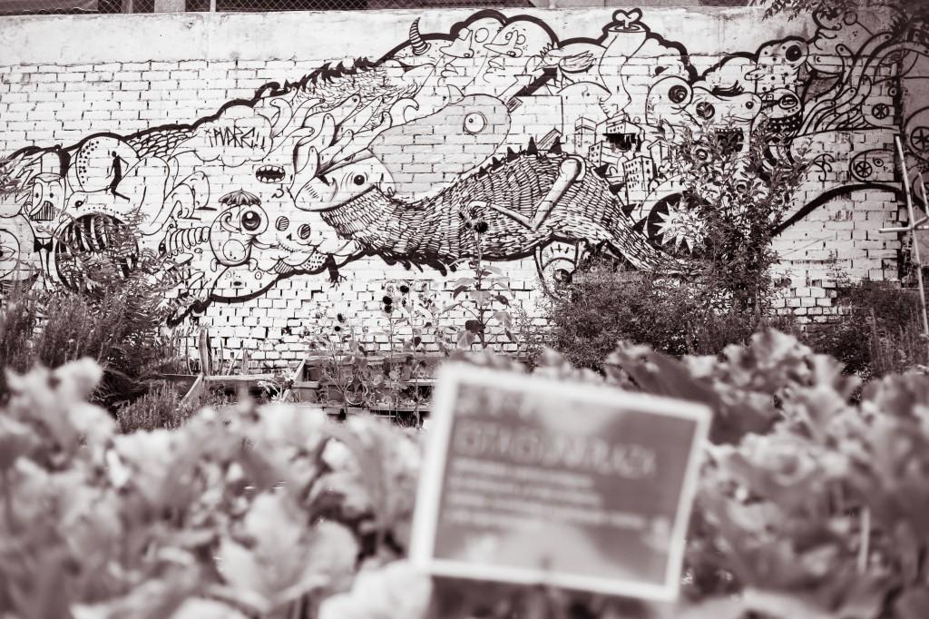 Esta es una plaza.Fotografía Charo Guijarro